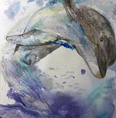 Delfin aus der Papageienstory